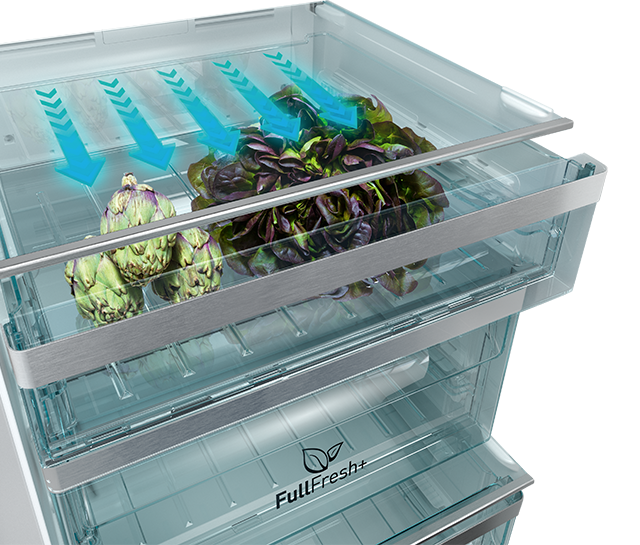 Full Fresh Fridge